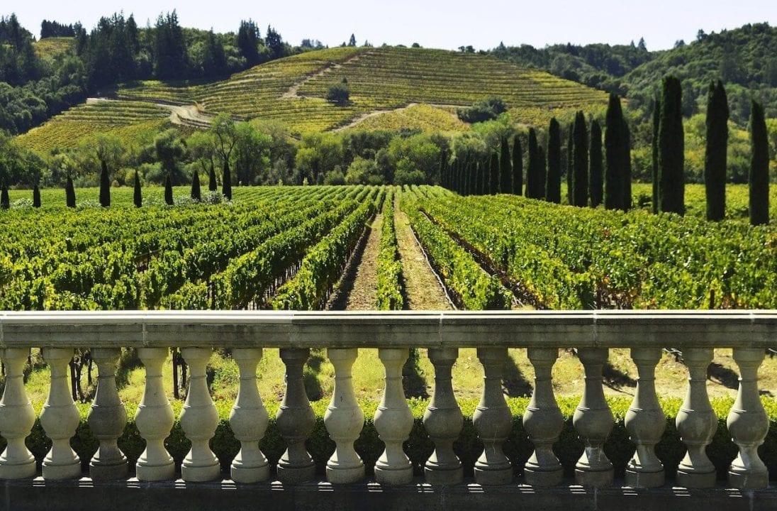 Un paesaggio vitivinicolo, sempre più meta turistica anche nel nostro paese