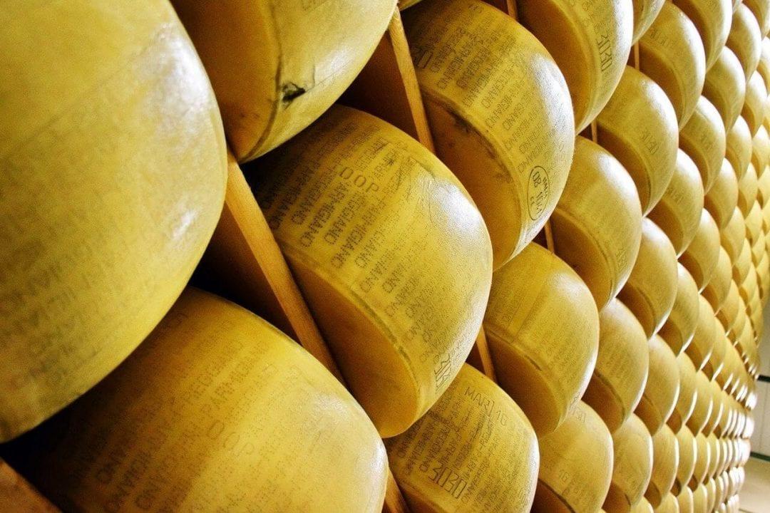 La stagionatura del Parmigiano Reggiano in uno dei caseifici aperti al pubblico per tour di degustazione