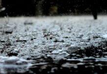 Piogge torrenziali e trombe d'aria: il maltempo degli ultimi giorni ha messo in ginocchio l'agricoltura