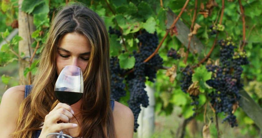 Cresce la percentuale di donne nel settore vitivinicolo